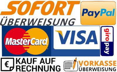 Zahlweisen-Logos
